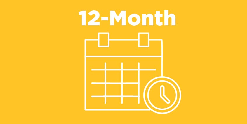12-Month Payment Plan Icon