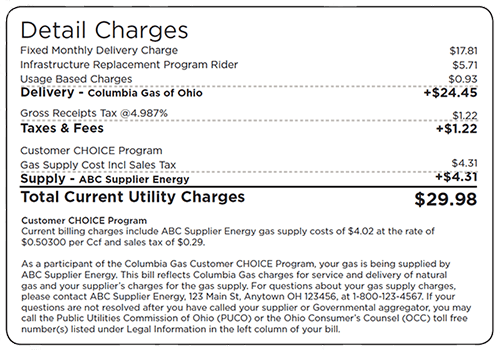 Screenshot of Detailed Charges for Ohio Utility Billing