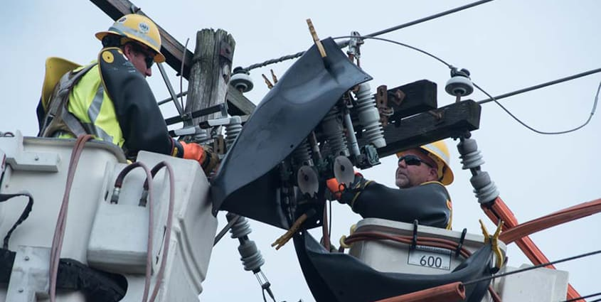 Employees working on electric lines